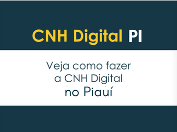 cnh digital pi