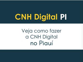 cnh digital pi